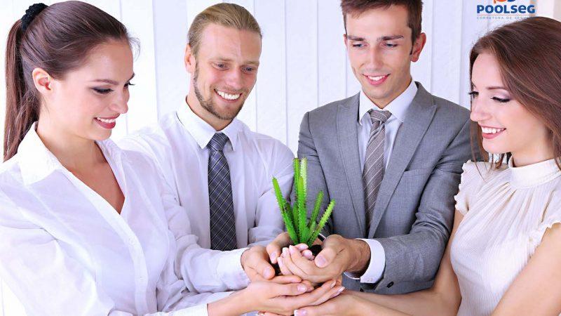 Os cuidados ambientais nas empresas