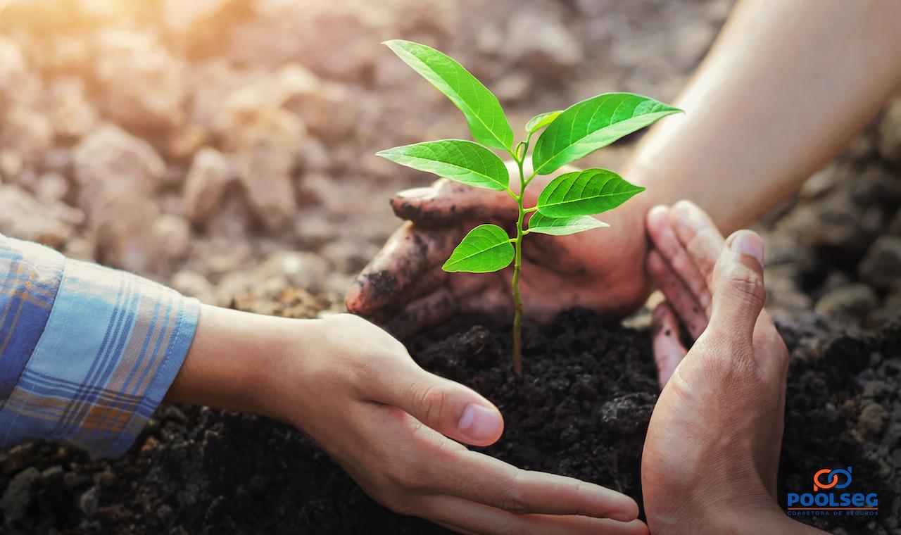 Responsabilidade ambiental: o crescimento econômico sustentável